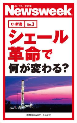 シェール革命で何が変わる?(ニューズウィーク日本版e-新書No.3)-電子書籍