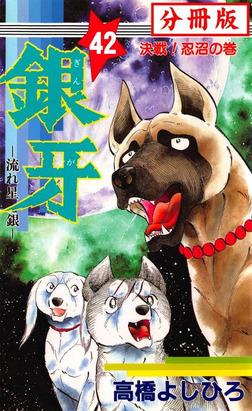 銀牙―流れ星 銀― 【分冊版】 42-電子書籍