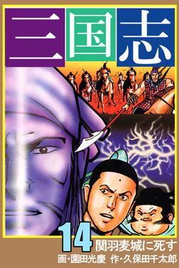三国志 14-電子書籍