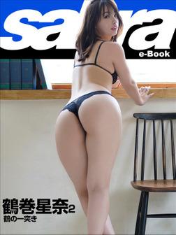 鶴の一突き 鶴巻星奈2 [sabra net e-Book]-電子書籍