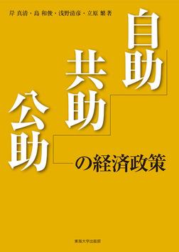 自助・共助・公助の経済政策-電子書籍