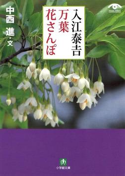 入江泰吉 万葉花さんぽ(小学館文庫)-電子書籍