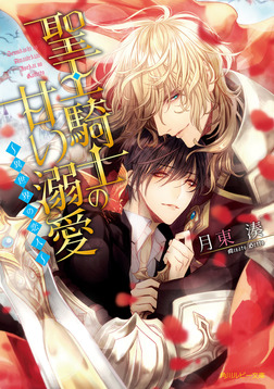聖王騎士の甘い溺愛 ~異世界の恋人~【電子特別版】-電子書籍