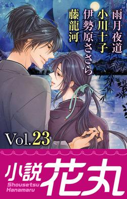 小説花丸 Vol.23-電子書籍