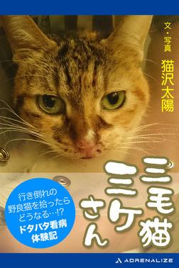 三毛猫ミケさん-電子書籍