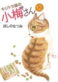 キジトラ猫の小梅さん / 12
