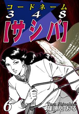 コードネーム348【サシバ】(6)-電子書籍