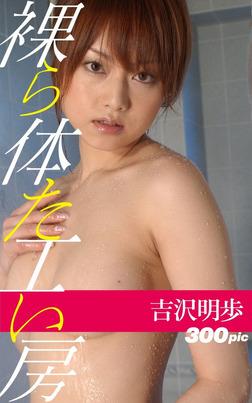 裸体工房【吉沢明歩】-電子書籍