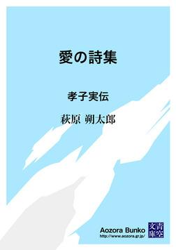 愛の詩集 孝子実伝-電子書籍
