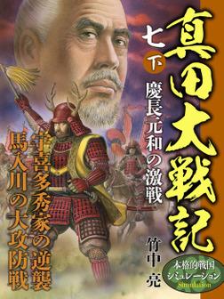 真田大戦記 七 下 慶長元和の激戦-電子書籍