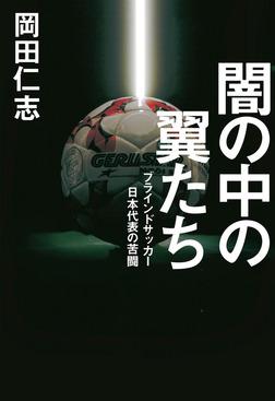 闇の中の翼たち ブラインドサッカー日本代表の苦闘-電子書籍