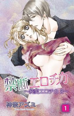 禁断エロチカ~純愛エロチカ2~1-電子書籍