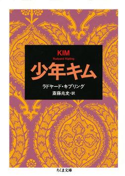 少年キム-電子書籍