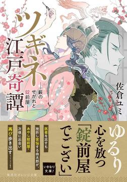 ツギネ江戸奇譚 ―藪のせがれと錠前屋―-電子書籍