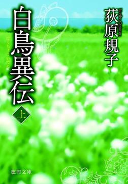 白鳥異伝[上]-電子書籍