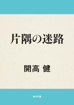 片隅の迷路-電子書籍