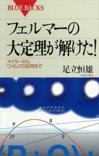 フェルマーの大定理が解けた! オイラーからワイルズの証明まで