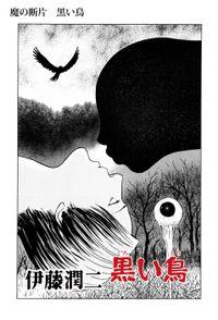 魔の断片 黒い鳥