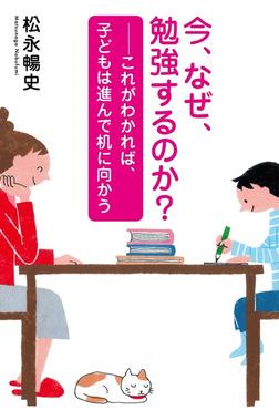 今、なぜ、勉強するのか?~これがわかれば、子どもは進んで机に向かう-電子書籍