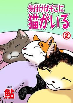 気付けばそこに猫がいる2-電子書籍