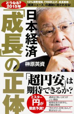 【どうなる?2015年】日本経済「成長」の正体-電子書籍