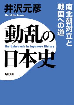 動乱の日本史 南北朝対立と戦国への道-電子書籍