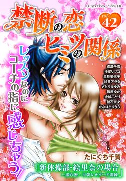 禁断の恋 ヒミツの関係 vol.42-電子書籍
