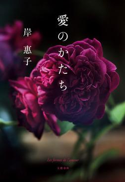 愛のかたち-電子書籍