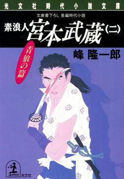 素浪人 宮本武蔵(二)〈青狼の篇〉-電子書籍