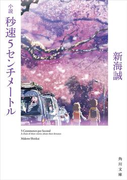 小説 秒速5センチメートル-電子書籍