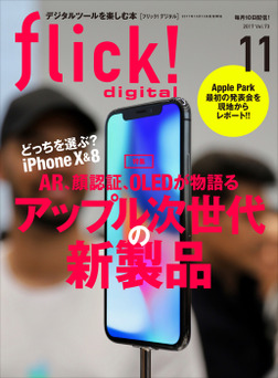 flick! digital 2017年11月号 vol.73-電子書籍