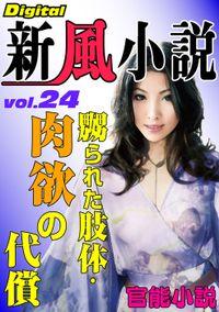 【官能小説】嬲られた肢体・肉欲の代償 ~Digital新風小説 vol.24~