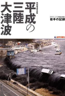 特別報道写真集 平成の三陸大津波 2011.3.11 東日本大震災 岩手の記録-電子書籍