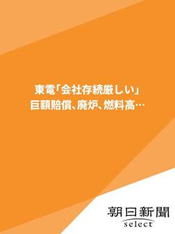 東電「会社存続厳しい」 巨額賠償、廃炉、燃料高…-電子書籍