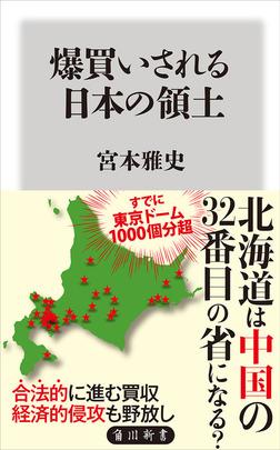 爆買いされる日本の領土-電子書籍