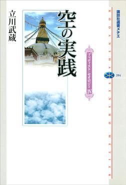 空の実践 ブッディスト・セオロジーIV-電子書籍