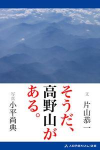 そうだ、高野山がある。