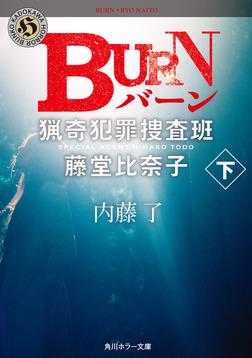 BURN 下 猟奇犯罪捜査班・藤堂比奈子-電子書籍