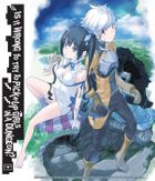 Is It Wrong to Try to Pick Up Girls in a Dungeon?, Vol. 1: Bookshelf Skin [Bonus Item]