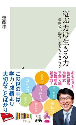遊ぶ力は生きる力~齋藤式「感育」おもちゃカタログ~-電子書籍