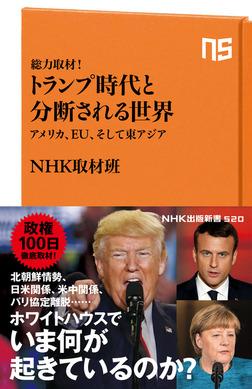 総力取材! トランプ時代と分断される世界 アメリカ、EU、そして東アジア-電子書籍