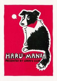 HARU MANIA 赤