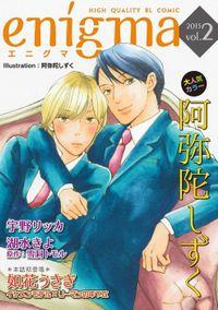 enigma vol.2 セレブ転校生×かわいこちゃん、ほか