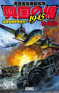 興国の楯1945 超爆撃機撃墜指令!
