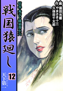 戦国猿廻し 信長・秀吉と蜂須賀小六 12-電子書籍