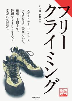 ヤマケイ登山学校 フリークライミング-電子書籍