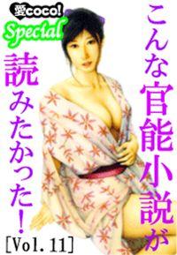 こんな官能小説が読みたかった!vol.11