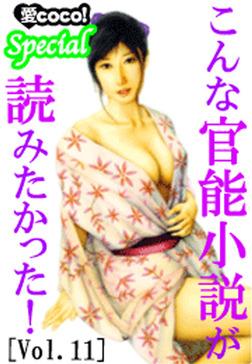こんな官能小説が読みたかった!vol.11-電子書籍
