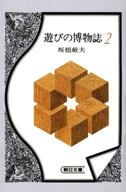 遊びの博物誌2-電子書籍
