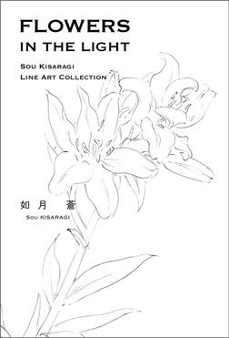 FLOWERS IN THE LIGHT  SOU KISARAGI LINE ART COLLECTION-電子書籍